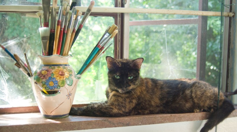 tortoiseshell cat on windowsill with paintbrushes