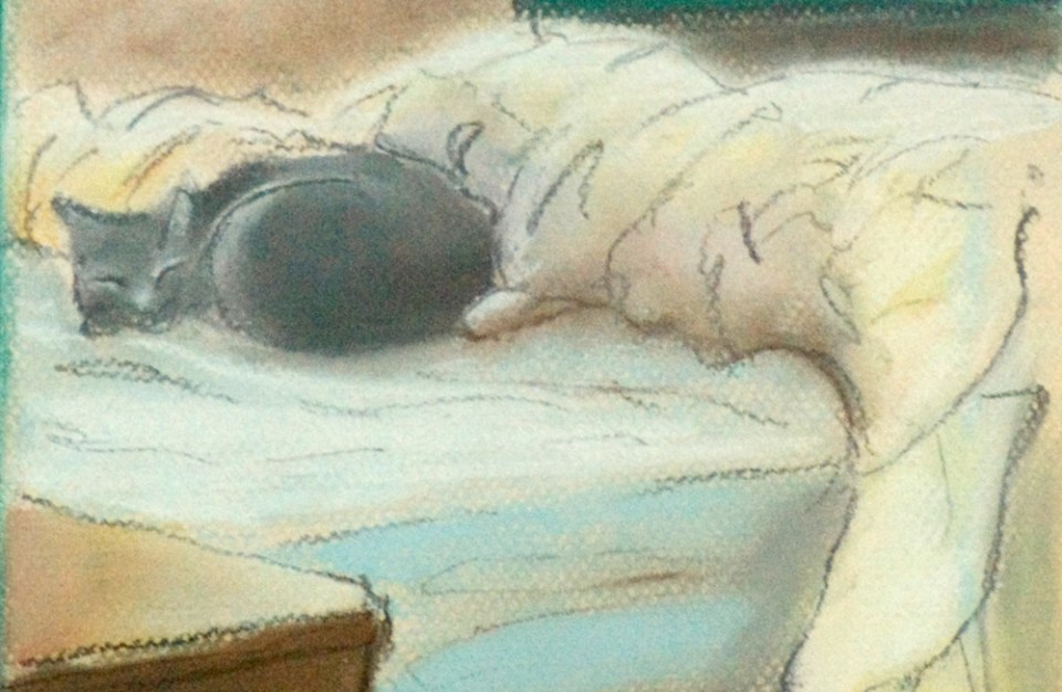pastel and charcoal portrait of cat on bed