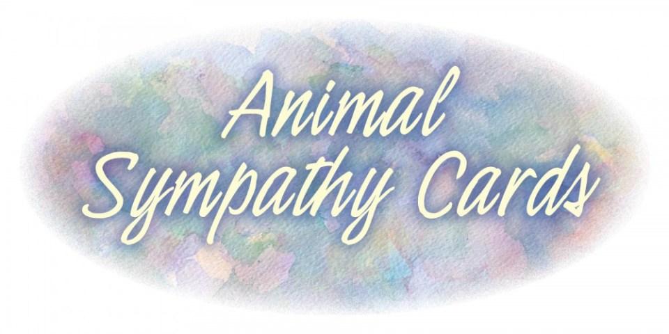 animal sympathy cards