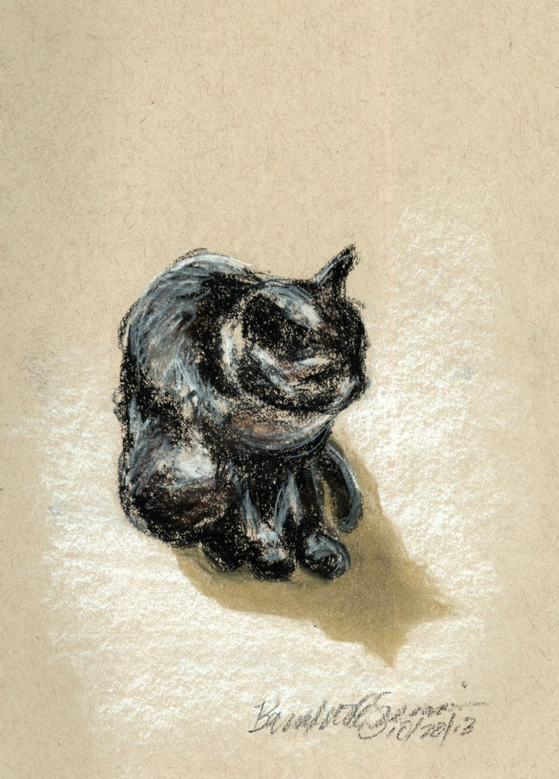 pastel sektch of cat on paper