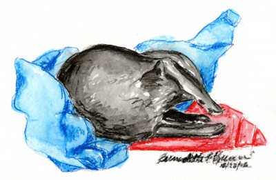 watercolor of black cat on red and blue blankets