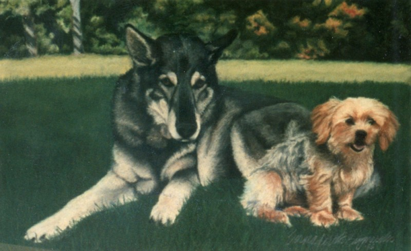pastel portrait of german shepherd and terrier