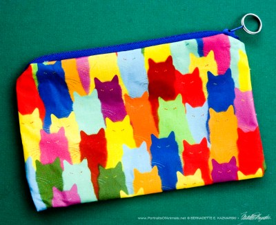 Inscrutable Patterns accessory bag