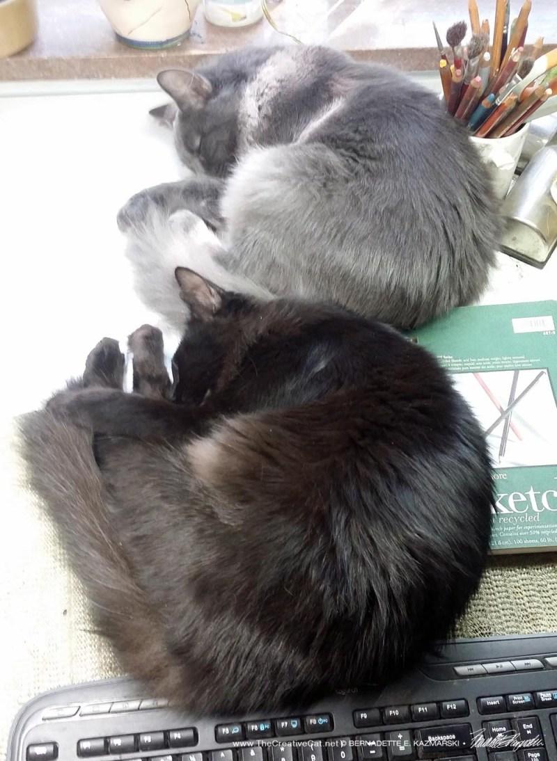 Symmetrical studio supervisors, Simon and Teddy Bear.