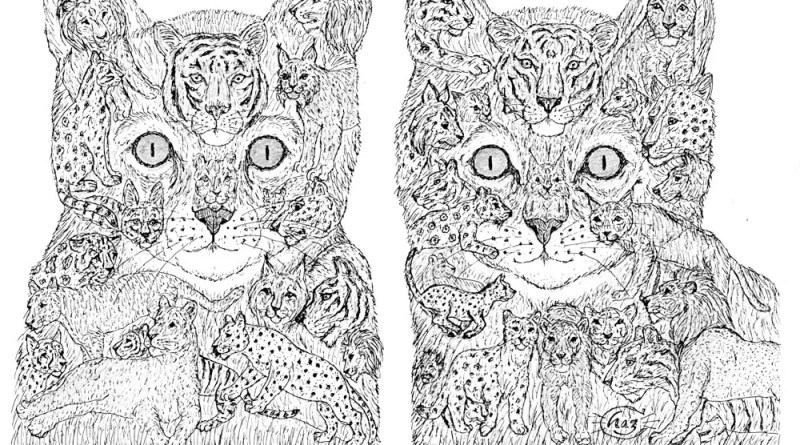 Ink drawing of two cats