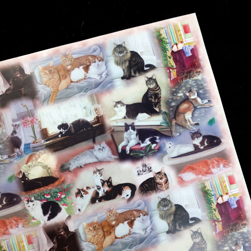 art paper with collage of cat portraits