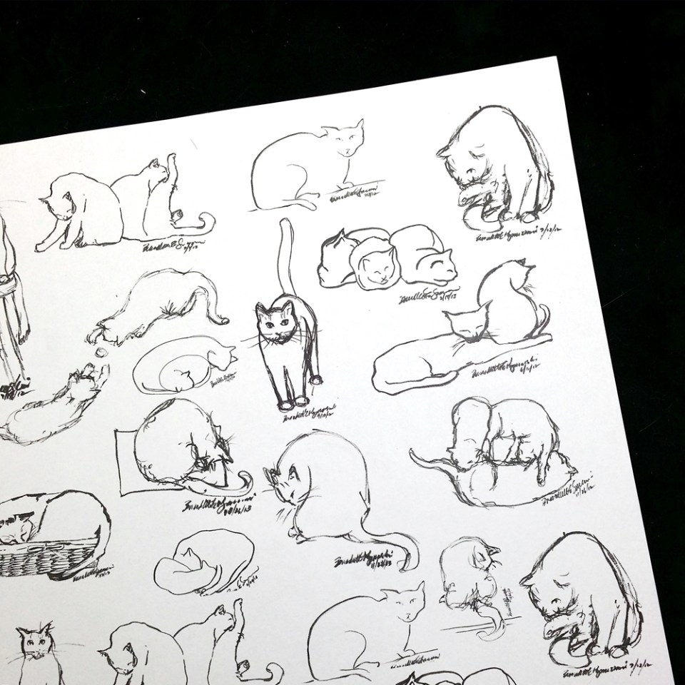 art paper with ink sketches of cats