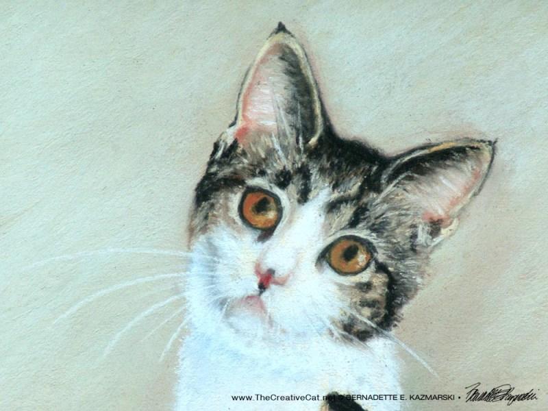 Augie, the August kitten.