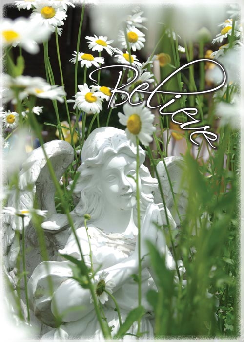 greeting card with angel and daisies
