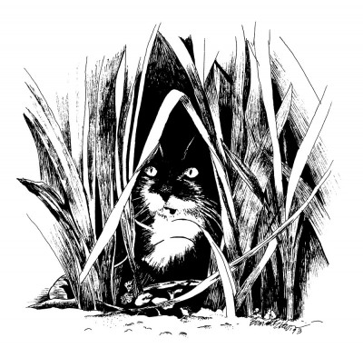 ink drawing of cat in grass
