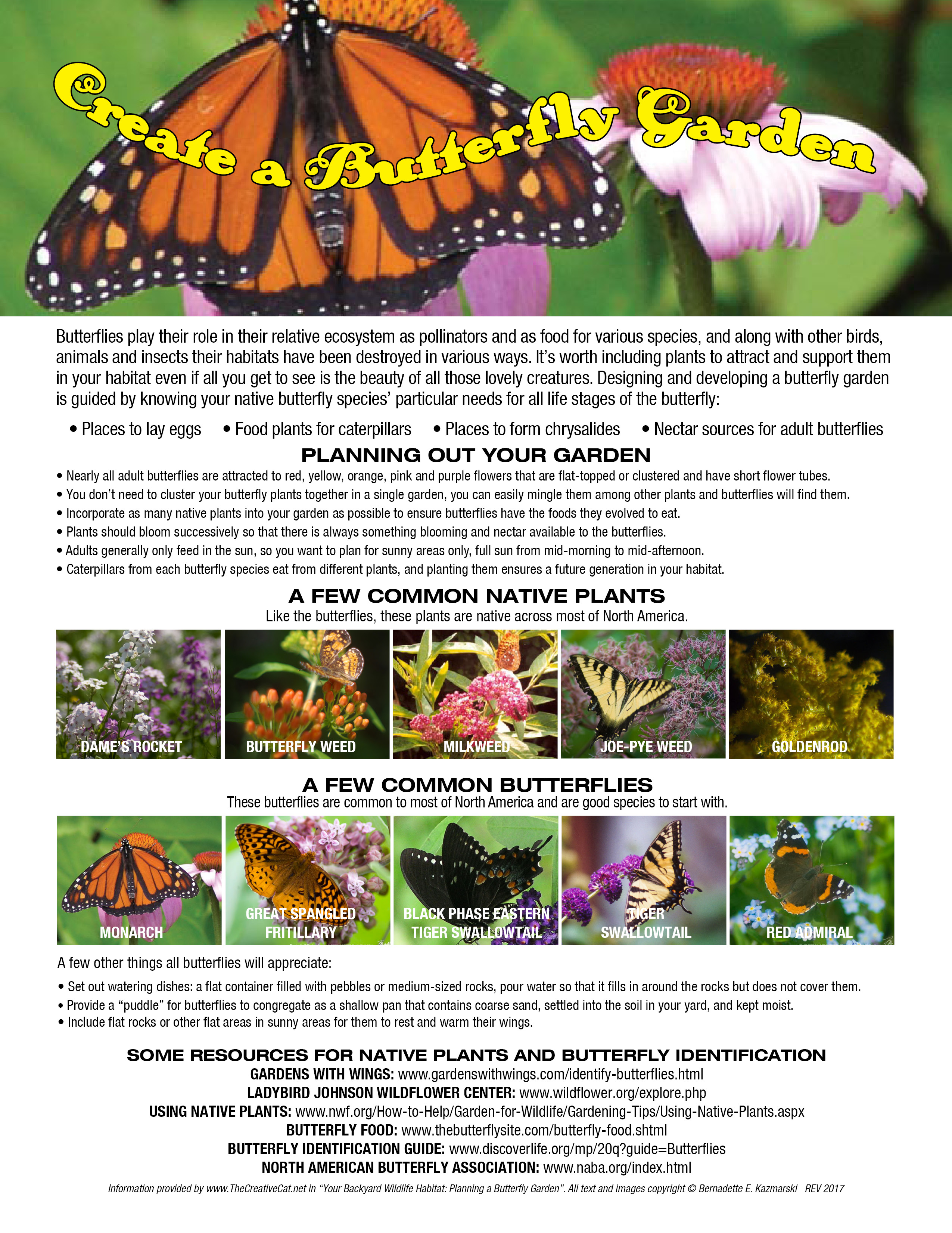 Your Backyard Wildlife Habitat: Plan and Certify Your ...