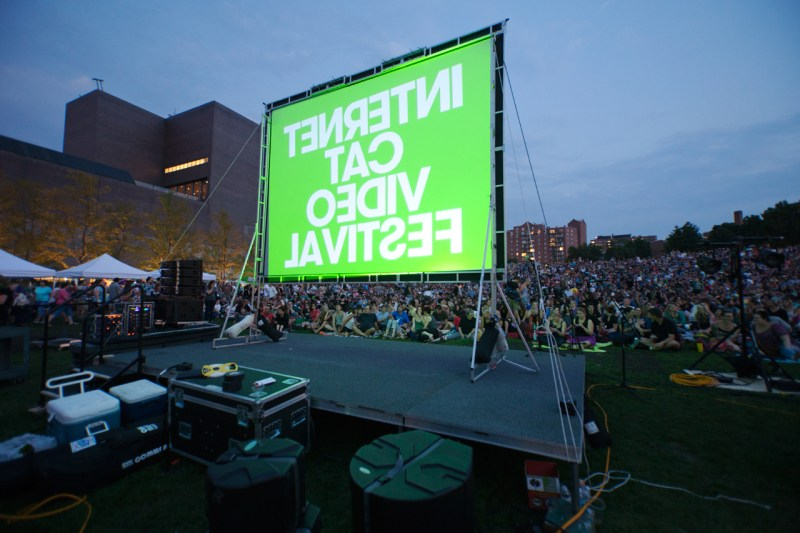 10,000 people watching the big screen (from the back) at the 2012 Cat Video Festival at Walker Art Center in Milwaukee.