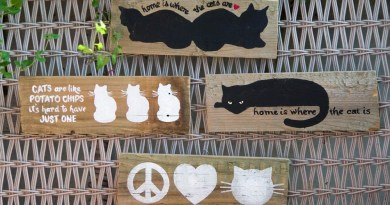 Marketplace: Signs of the Cat
