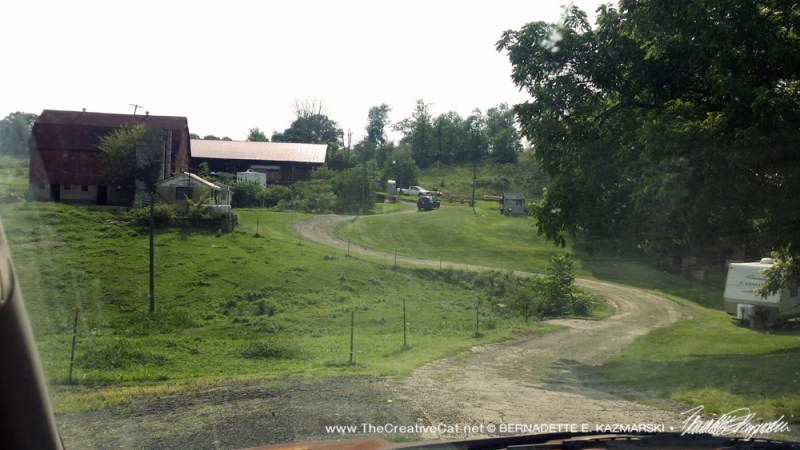 The entrance to the farm. The barn is around the bend behind the trees on the right.