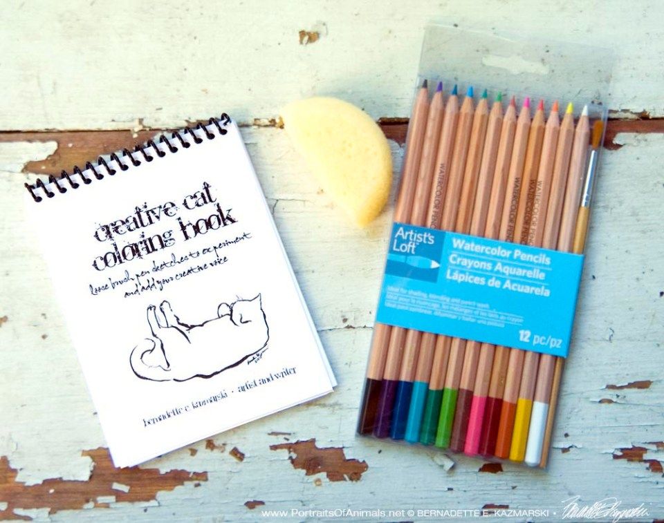 The full set with coloring book, watercolor pencils and sponge.