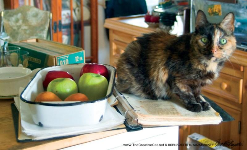 February-Cookie Apple Crisp