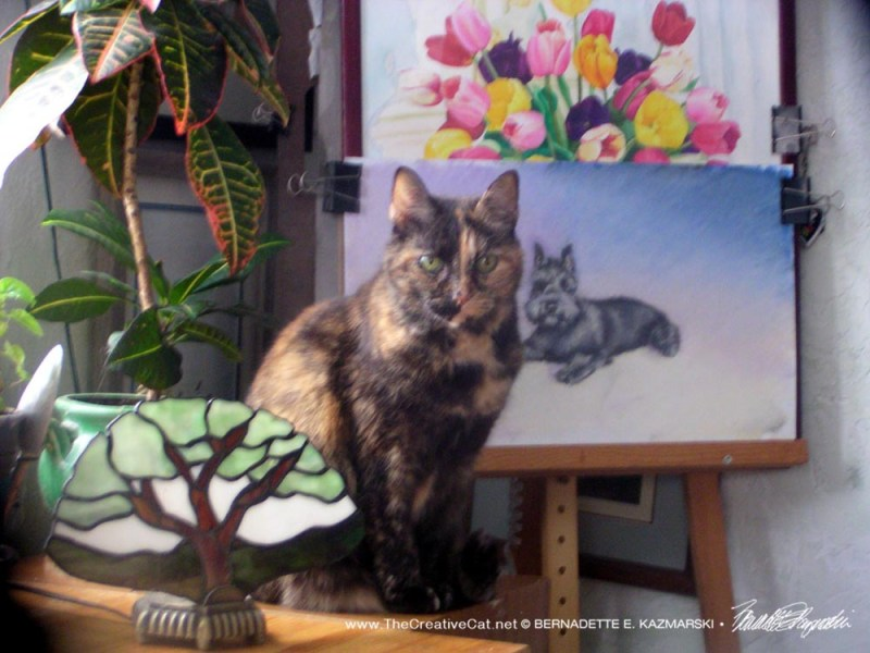 tortoiseshell cat with artwork and plants