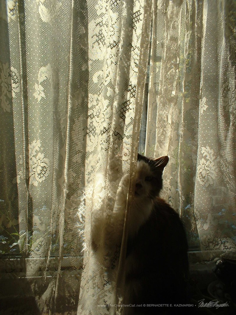 Sophie peeking around the curtain #1