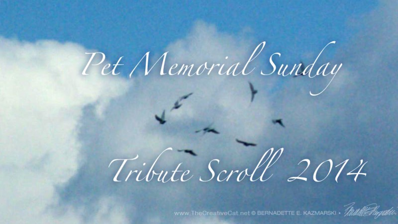 The 2014 Tribute Scroll