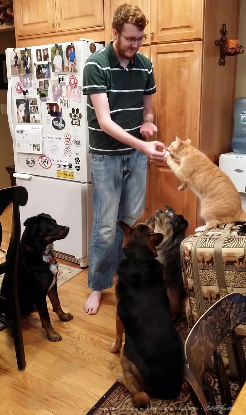 Everyone gets treats.