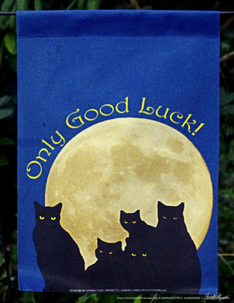 Only Good Luck Black Cats garden flag