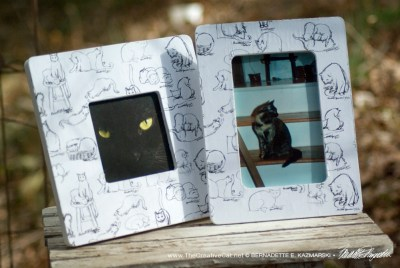 """Brushy Kitties"" photo frames."