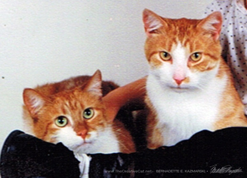 Russell, left, and Frederico