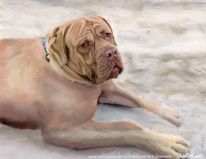"""""""Grayson"""", pastel, 11"""" x 14"""", 2016 © Bernadette E. Kazmarski"""