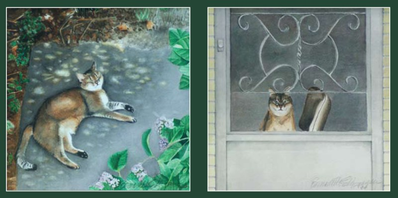 two watercolor portraits of abyssinian cats