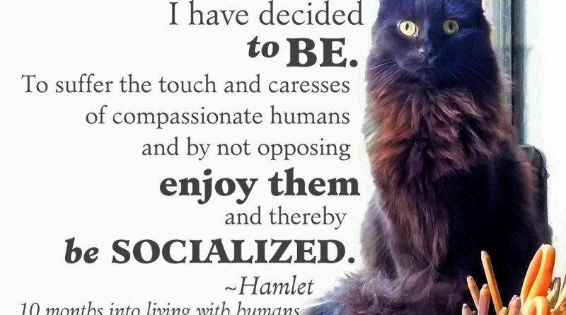 "Hamlet has decided ""to be""."