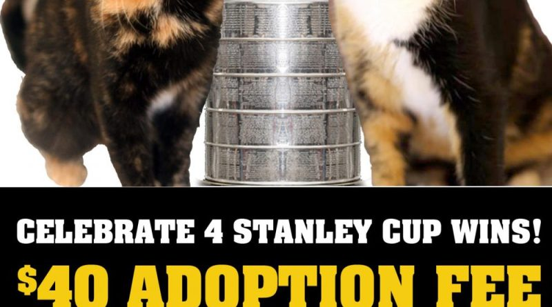 Pittsburgh C.A.T. Stanley Cup Special!