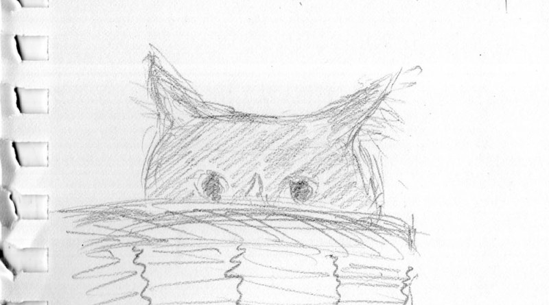 pencil sketch of cat in basket