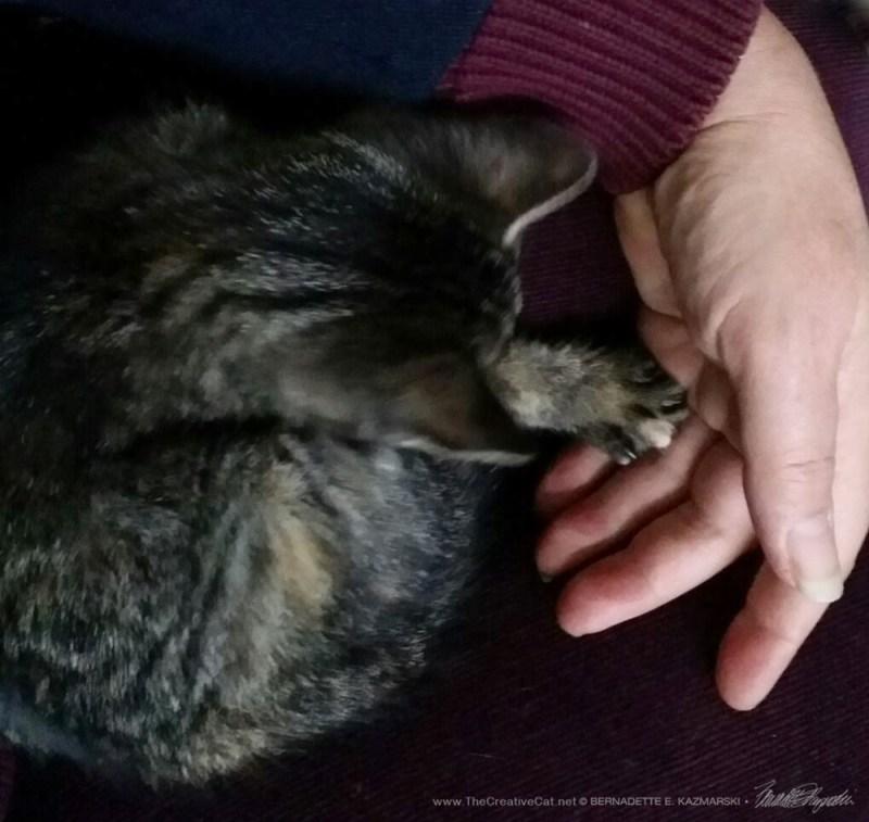 Kallisto holds my hand.