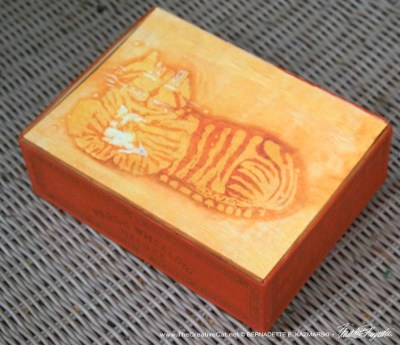 Smiling Cheshire Kitty Vintage Cigar Box Keepsake