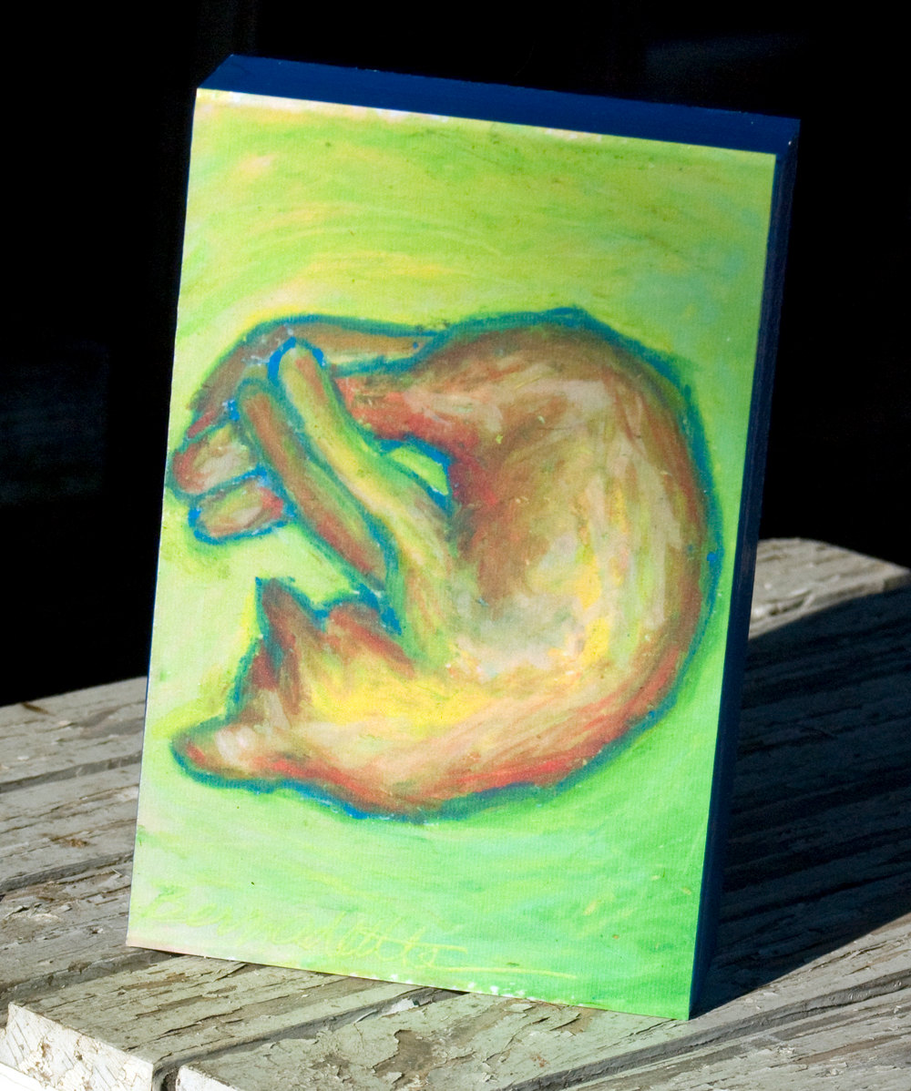 Kelly's Yellow Nap 4x6 Wood Mount Print