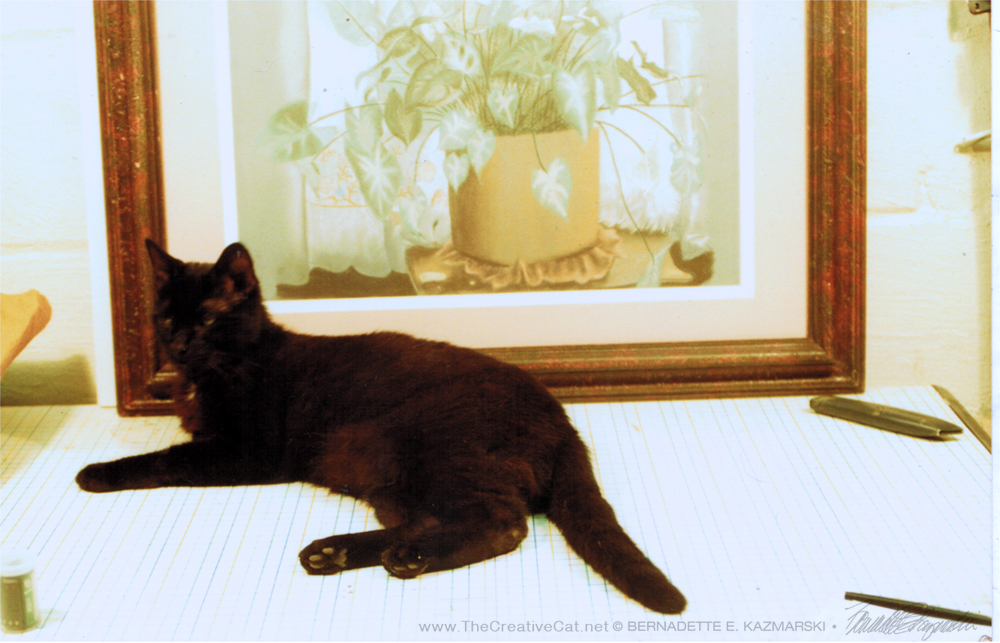 Vintage Photo: The First Cat Photo in This House, 1991