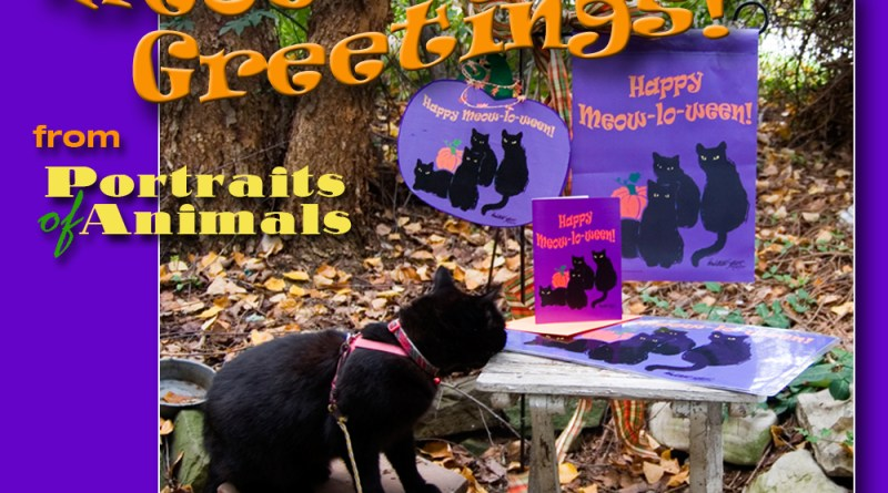 Meow-lo-ween Greetings!