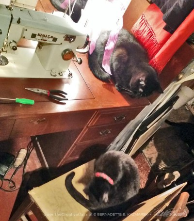 two black cats with sewing machine