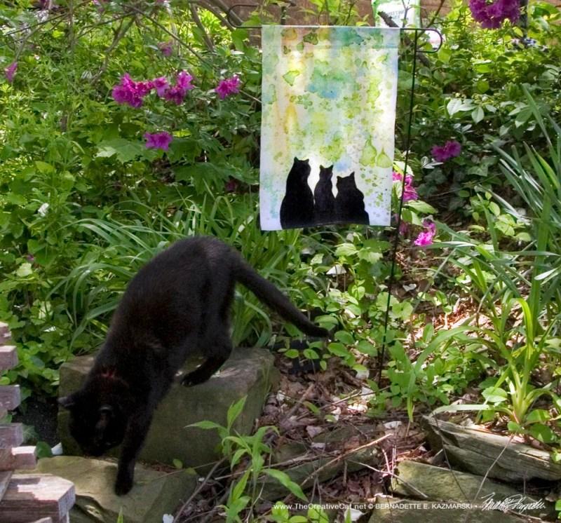 black cat with garden flag