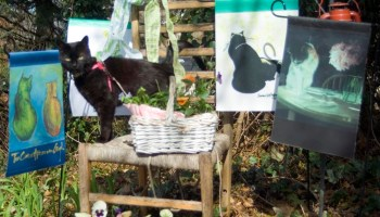 Garden Flags With Mimi The Creative Cat