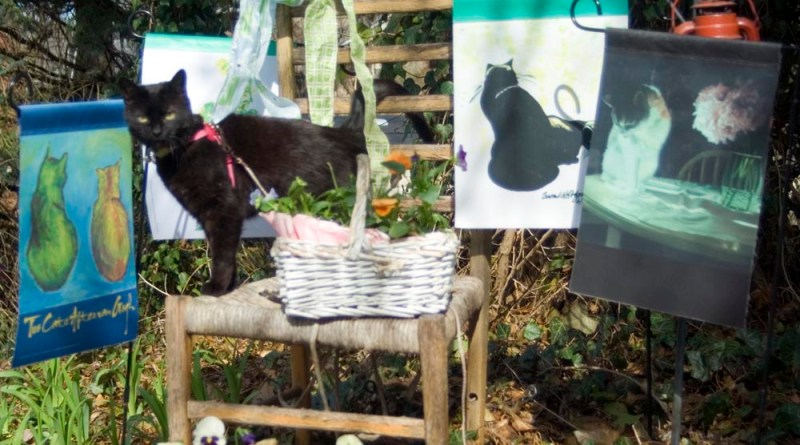 black cat with garden flags