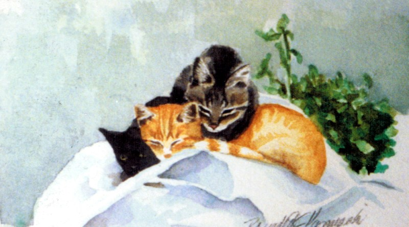 watercolor of three kittens on feed sacks