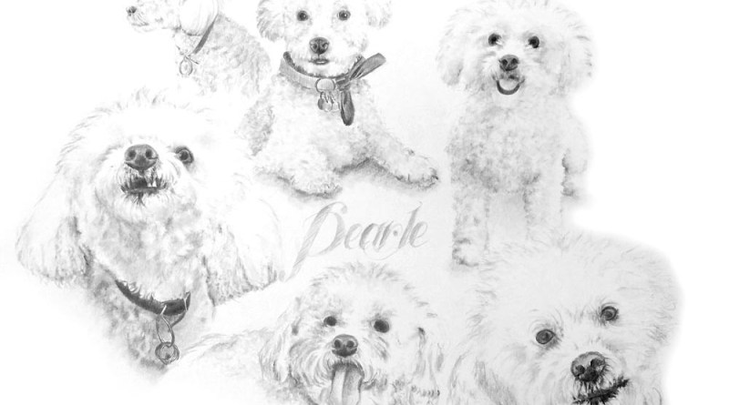 """Pearle"", pencil on illustration board, 22″ x 28″ © Bernadette E. Kazmarski"