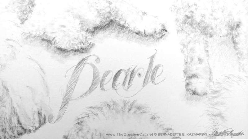 The text of Pearle's name added to the center of the portrait.