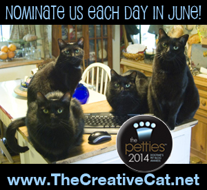 Nominate us for a Petties Award