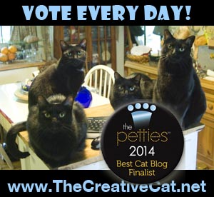 four black cats petties award.