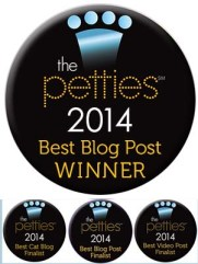 Petties nominations and awards