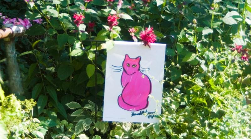 Pink Sunshine garden flag in my pink garden by the driveway.