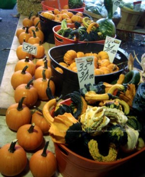 Gourds displayed in bins with small pumpkins on the table at the farmer's market.