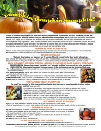 """Pumpkins, Pumpkins, Pumpkins!""downloadable guidesheet."
